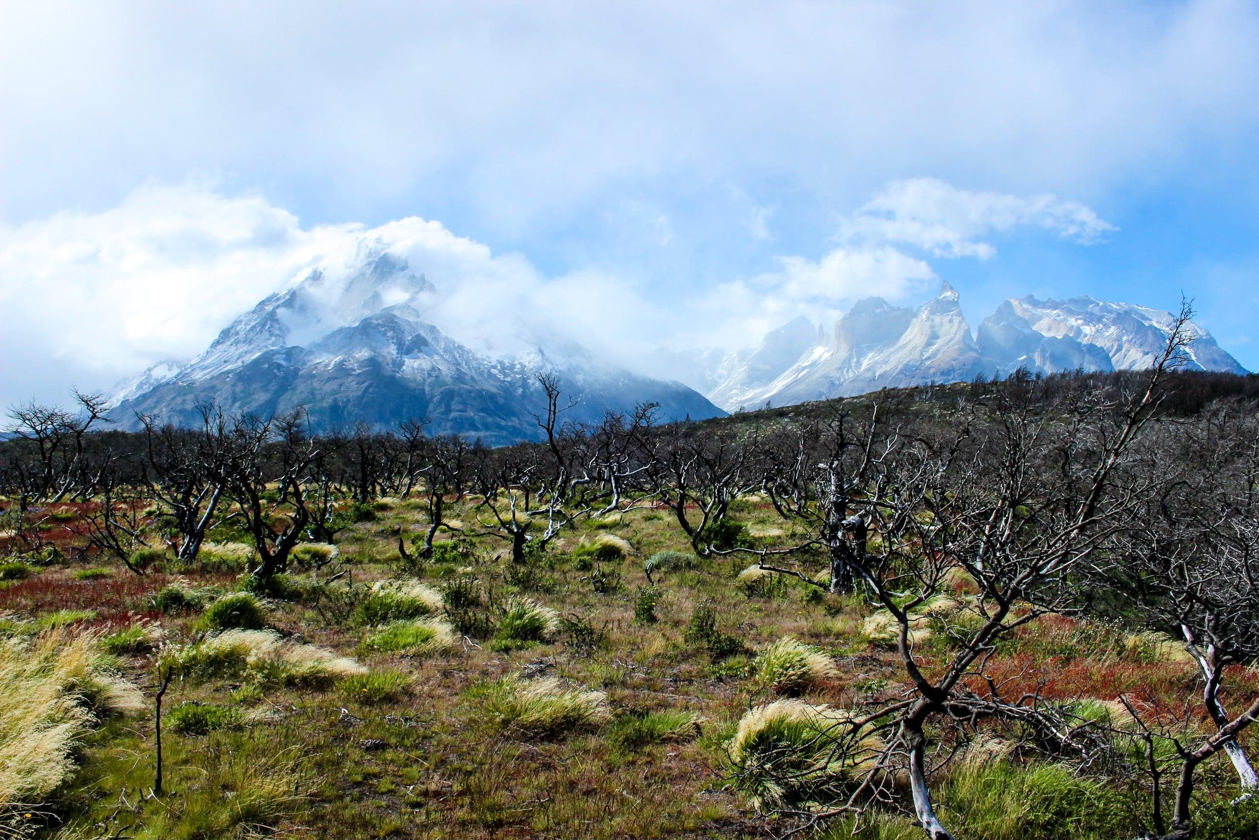 Torres del Paine, Chile.