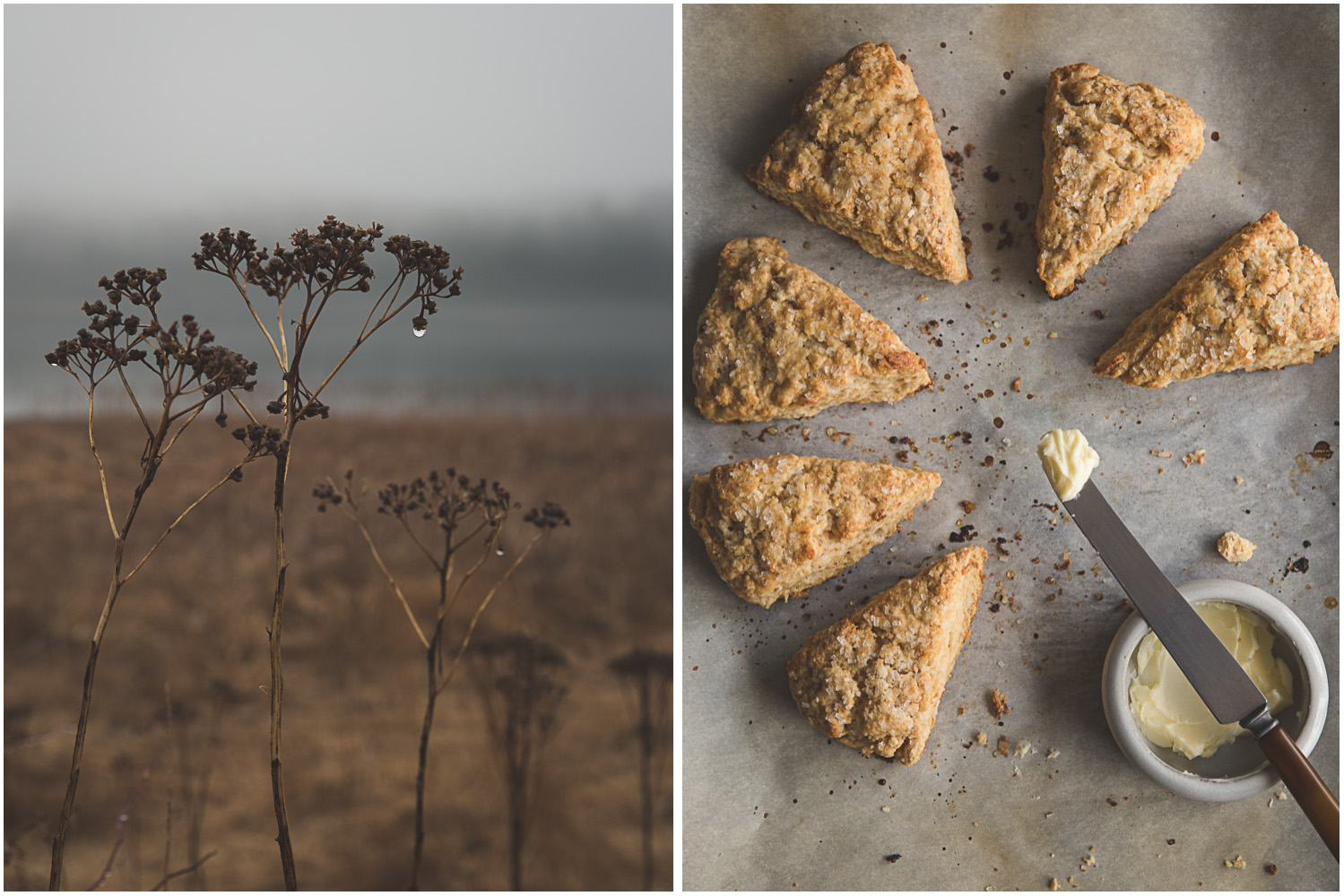 Rainy morning with brown sugar scones