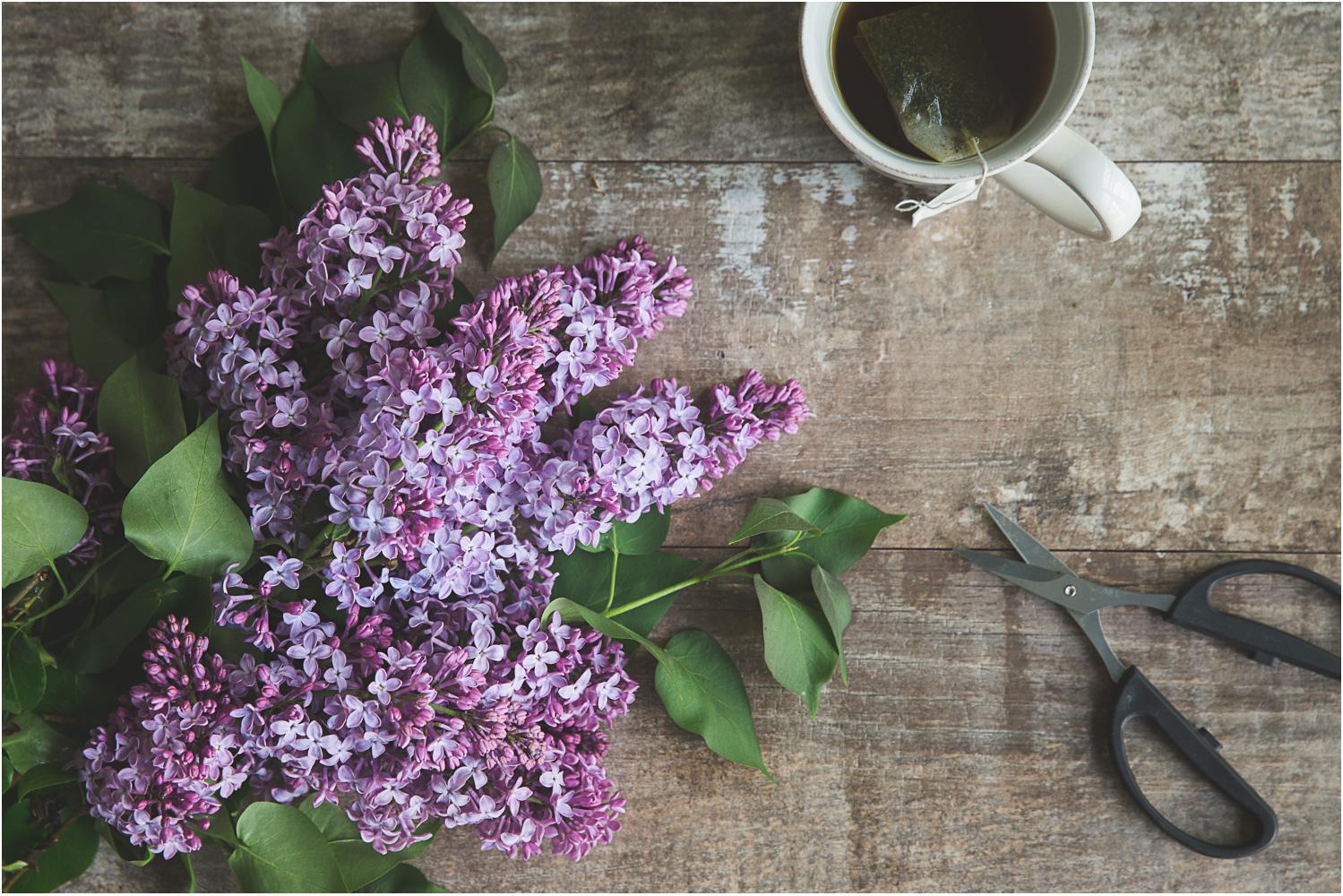 Cut lilacs with tea