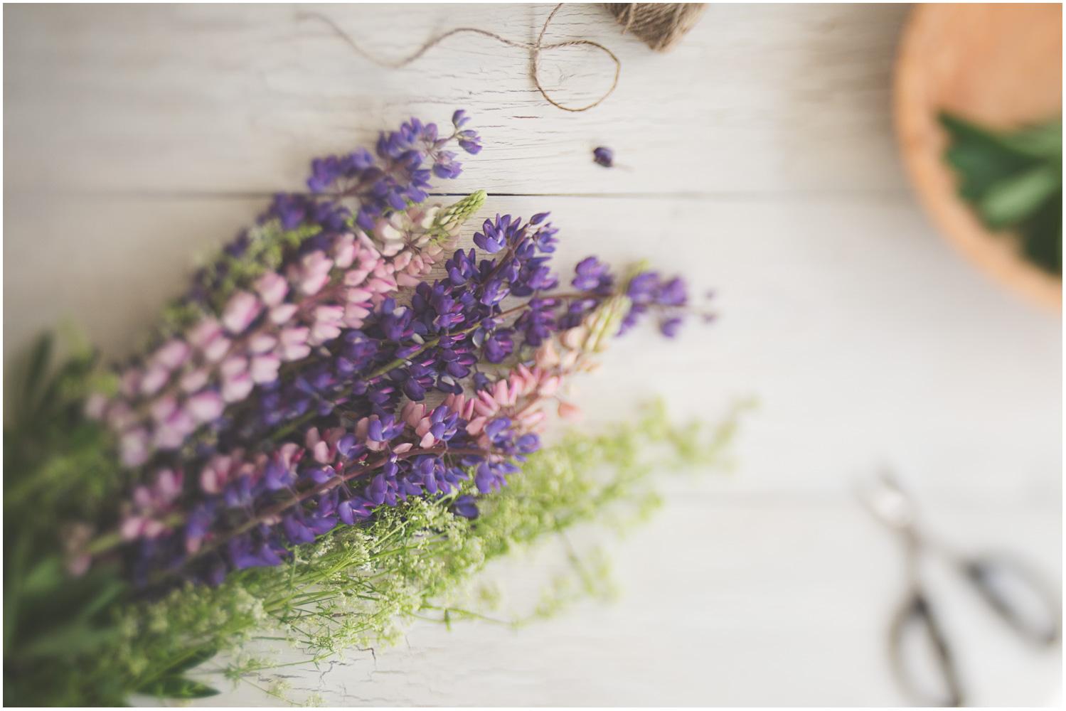04_June_Flora_Lupine.jpg