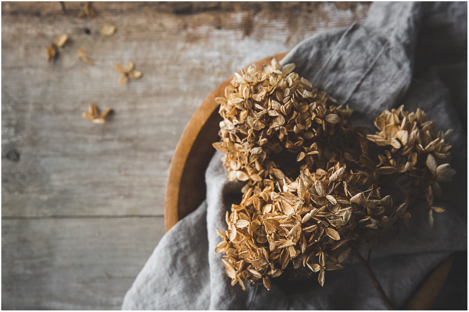 Dried hydrangeas in a wooden bowl