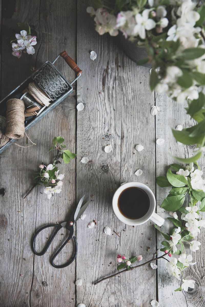 Apple blossoms and coffee