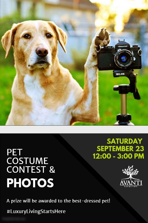 Avanti Luxury Apartments Pet Portraits & Costume Contest