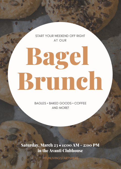 Avanti Luxury Apartments in Bel Air Bagel Brunch Flyer