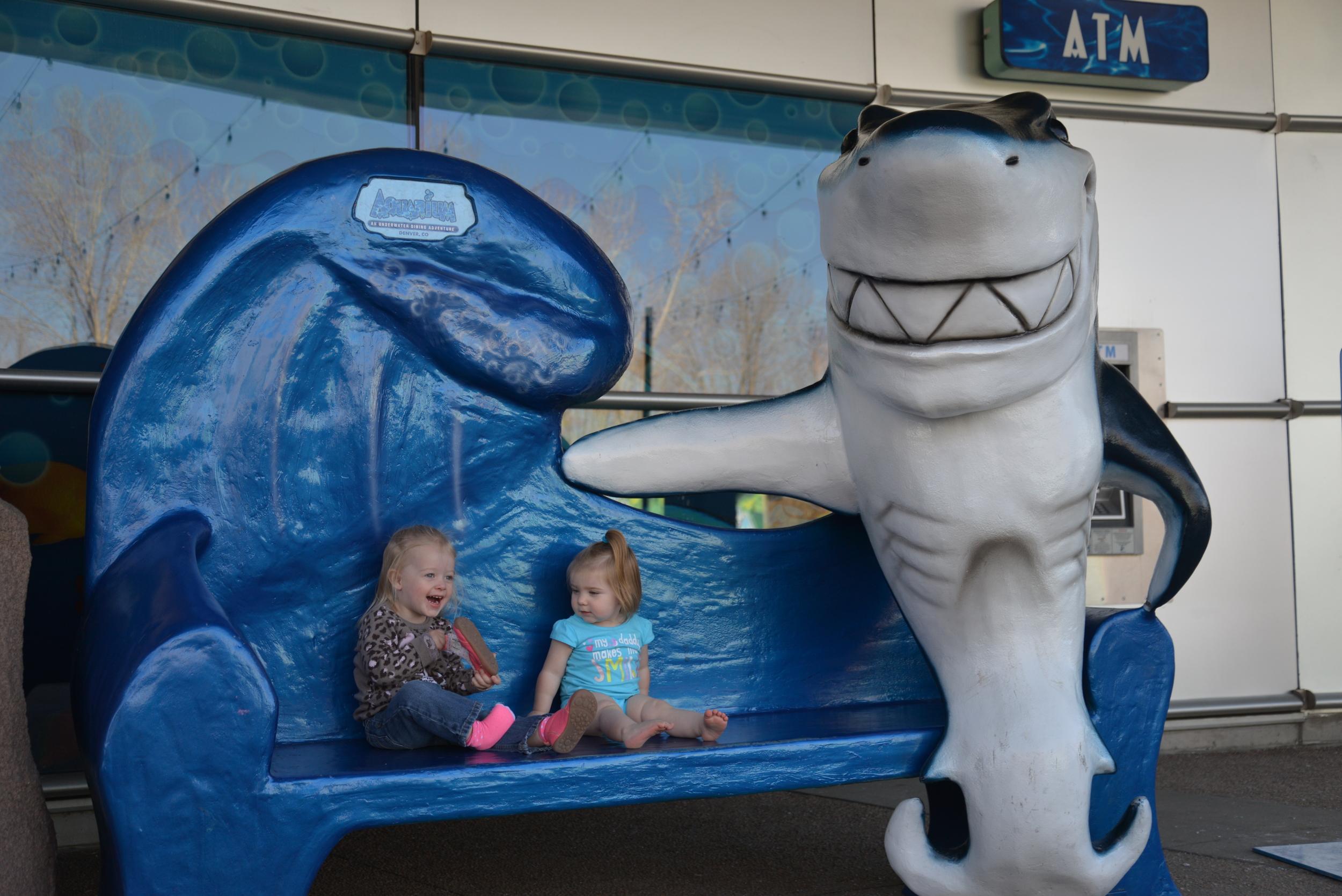 Ava at Denver Aquarium