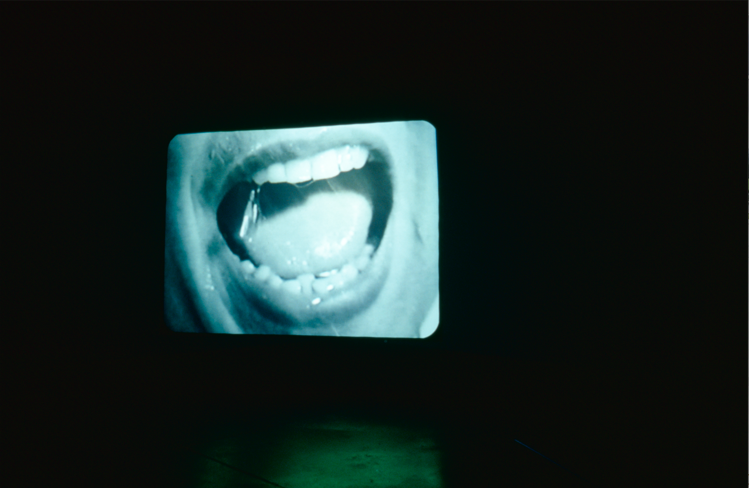 Douglas Gordon,  24 Hour Psycho, 1993  (installation The Power Plant 2000); photo: Cheryl O'Brien