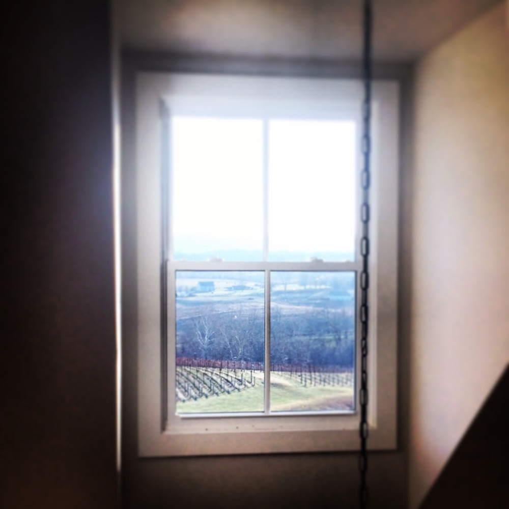 The sloping vineyard at Delaplane Cellars, seen through a window on the top floor of the winery as light flows in from beyond the mountains.