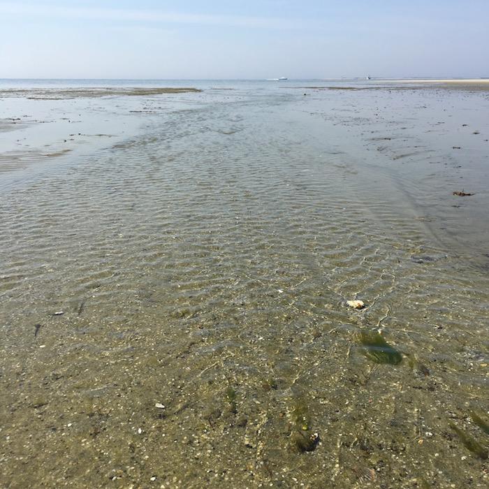 Tide retreats to the sea