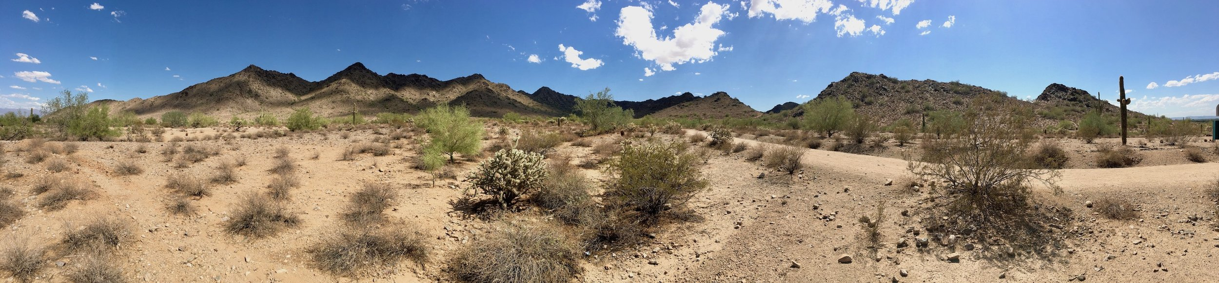 Drove just a bit outside of Phoenix to the San Tan Mountain Goldmine Trail. Worth it.