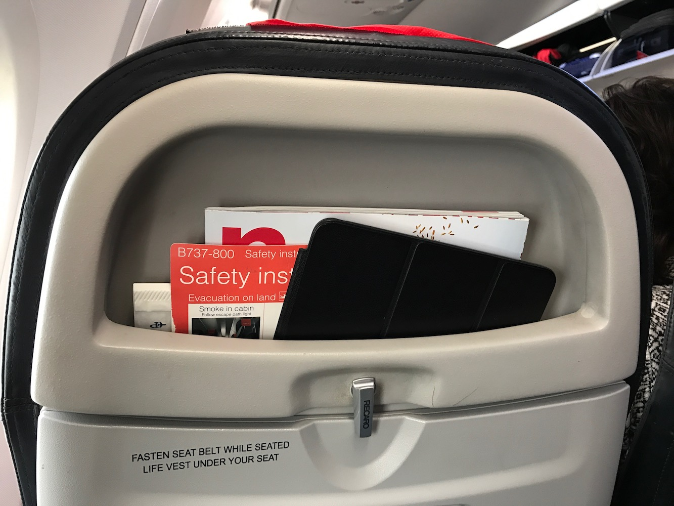 I do appreciate these seat backs for their iPad storage potential.