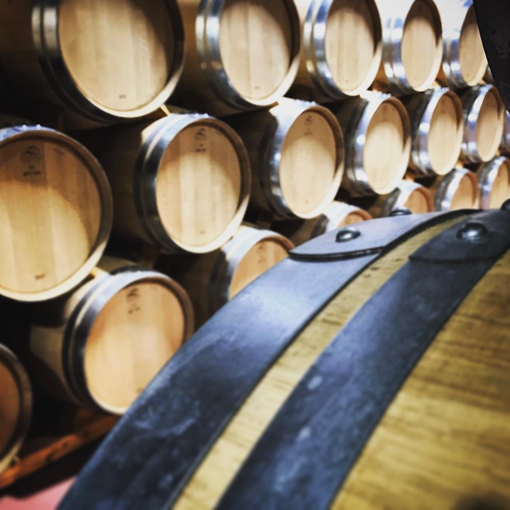 WINE_San Roman barrels.jpg
