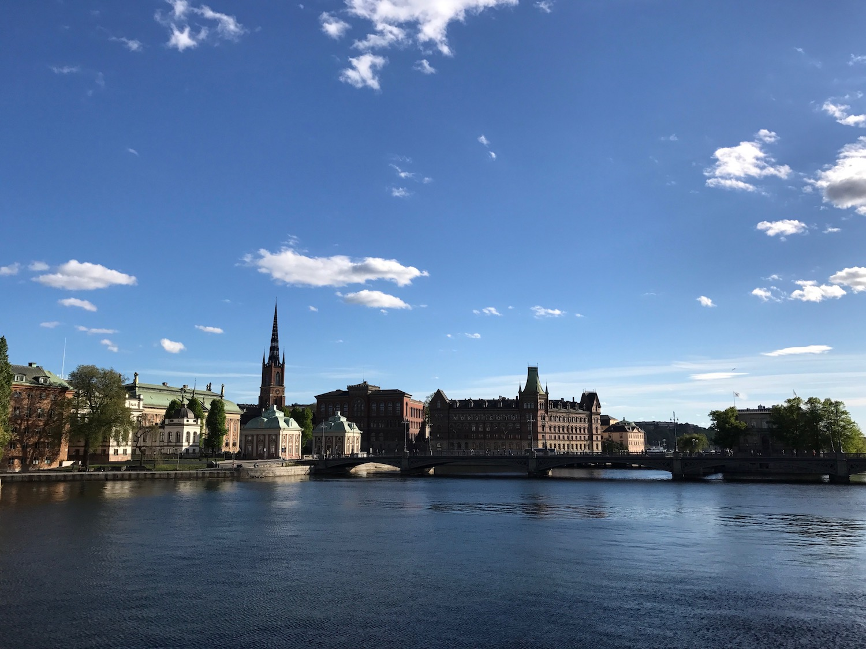 Standing on the Riksdag's bridge