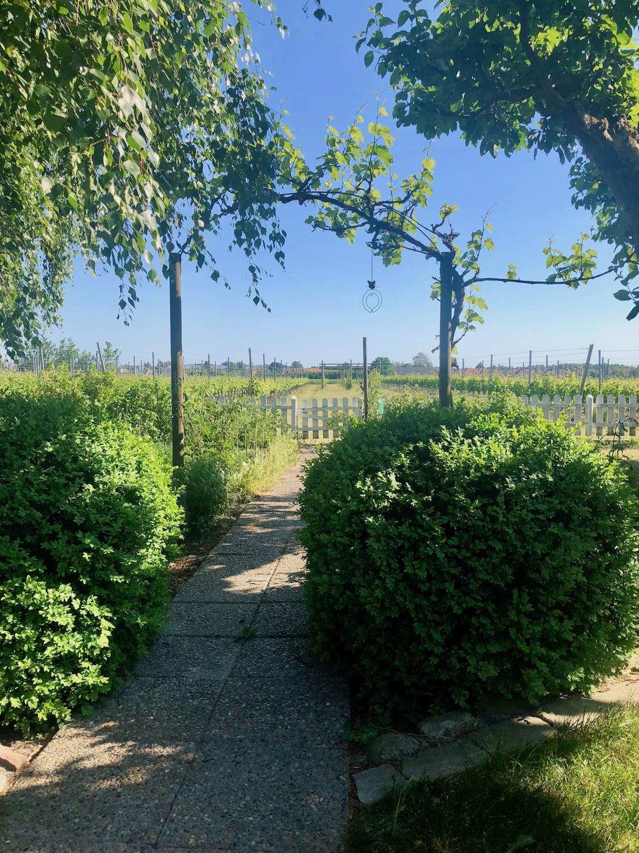 WINE_Klagshamn Garden.jpg