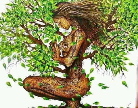 african mother nature.jpg