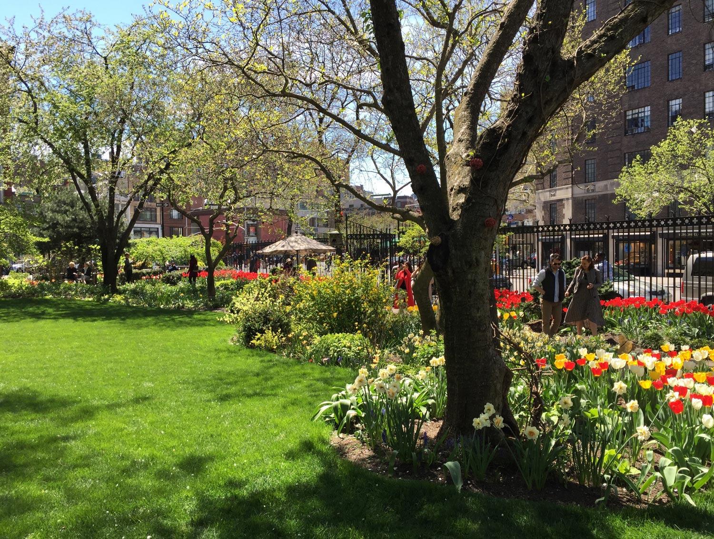 Spring-flowers-Jefferson-Market-Garden-New-York-City.jpg