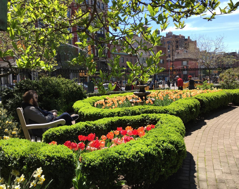 Spring-Tulips-Jefferson-Market-Garden-New-York-City.jpg