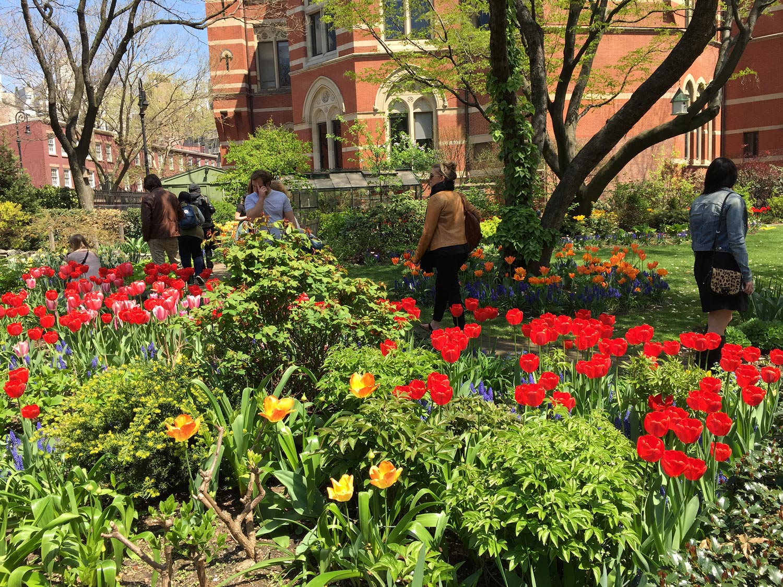 People-Enjoying-Spring-Tulips-Jefferson-Market-Garden-New-York-City.jpg