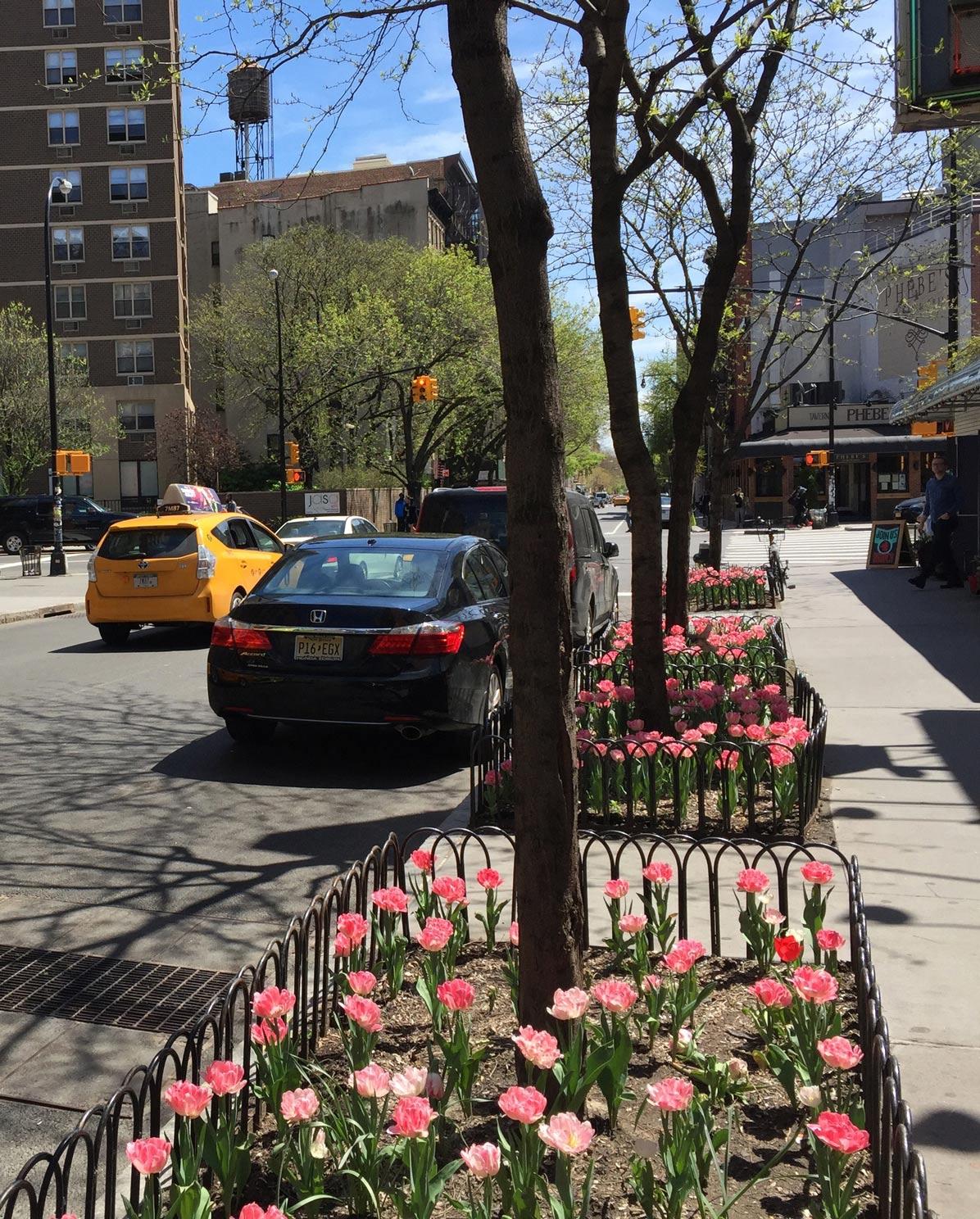 Tulips-New-York-City-Bowery-Street.jpg