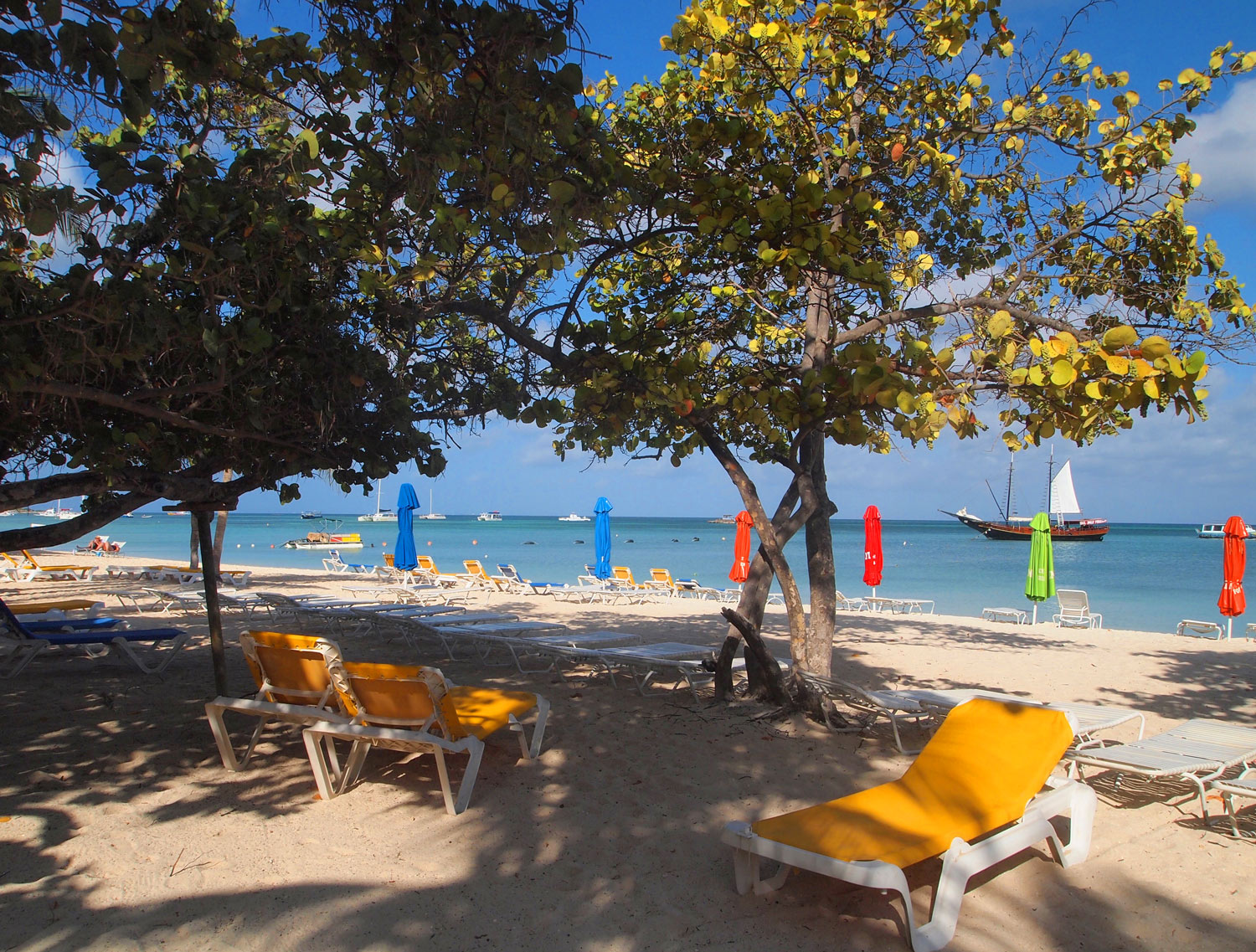 Aruba-Palm-Beach-trees-lounge-chairs.jpg