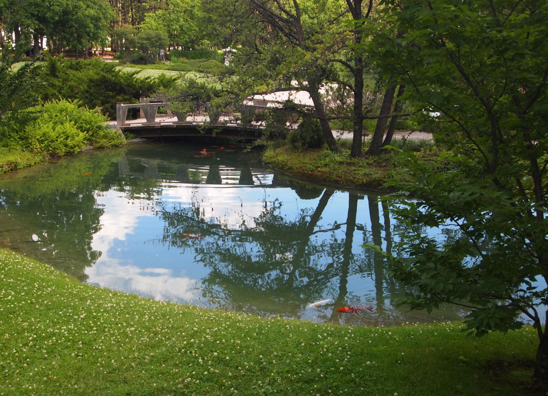Montreal-Botanical-Garden-Japanese-Garden-Bridge.jpg