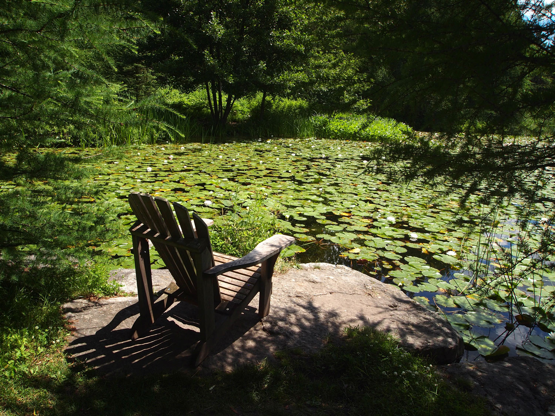 Montreal-Botanical-Garden-First-Nations-Pond-Chair.jpg