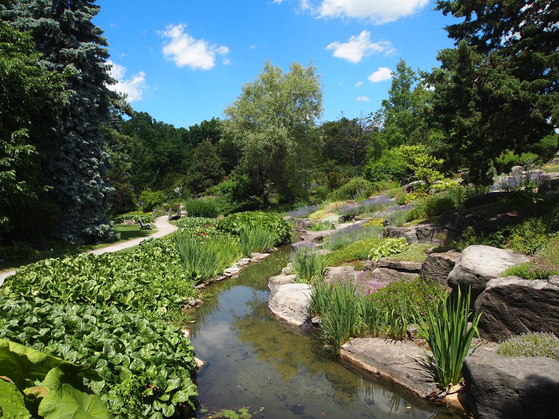Montreal-Botanical-Garden-Alpine-Garden-Alpine-Garden-plants.jpg
