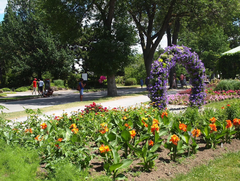 Montreal-Botanical-Garden-Innovations-Petunia-Arch.jpg