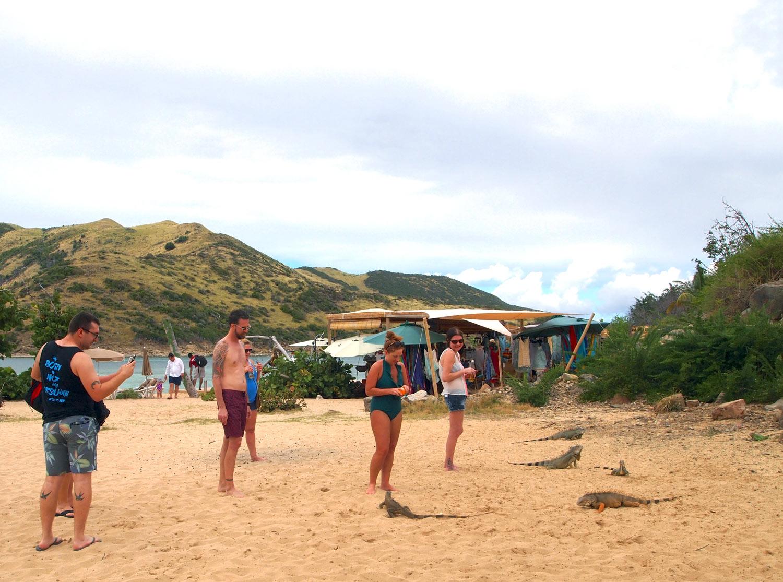 Saint-Martin-Pinel-Island-tourists-iguanas.jpg