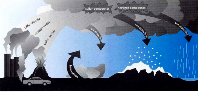 Graphic of acid rain cycle.