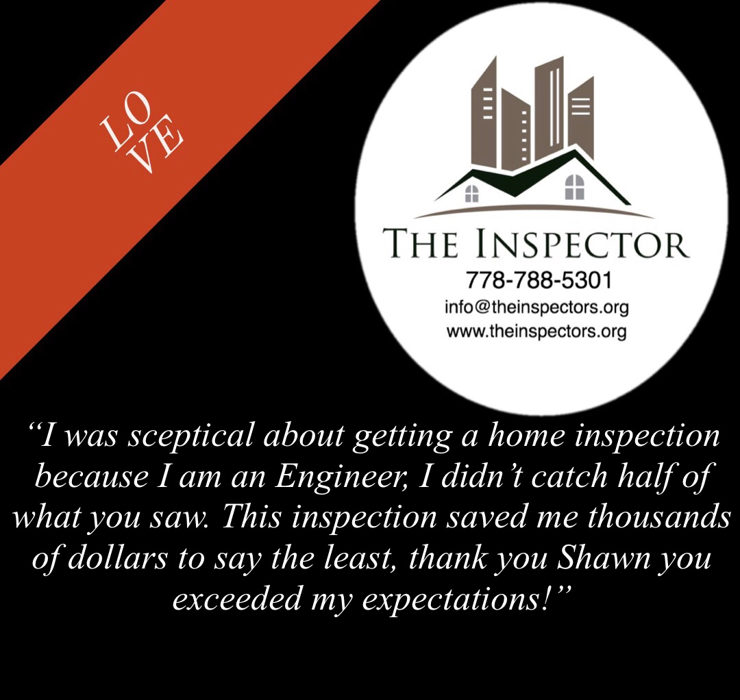 the-inspector-shawn-review.jpg