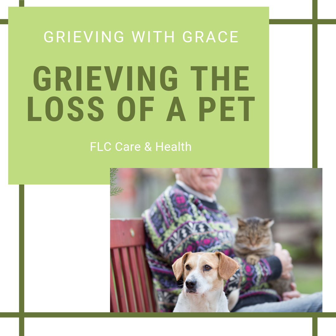 Pet Loss, square (1).png
