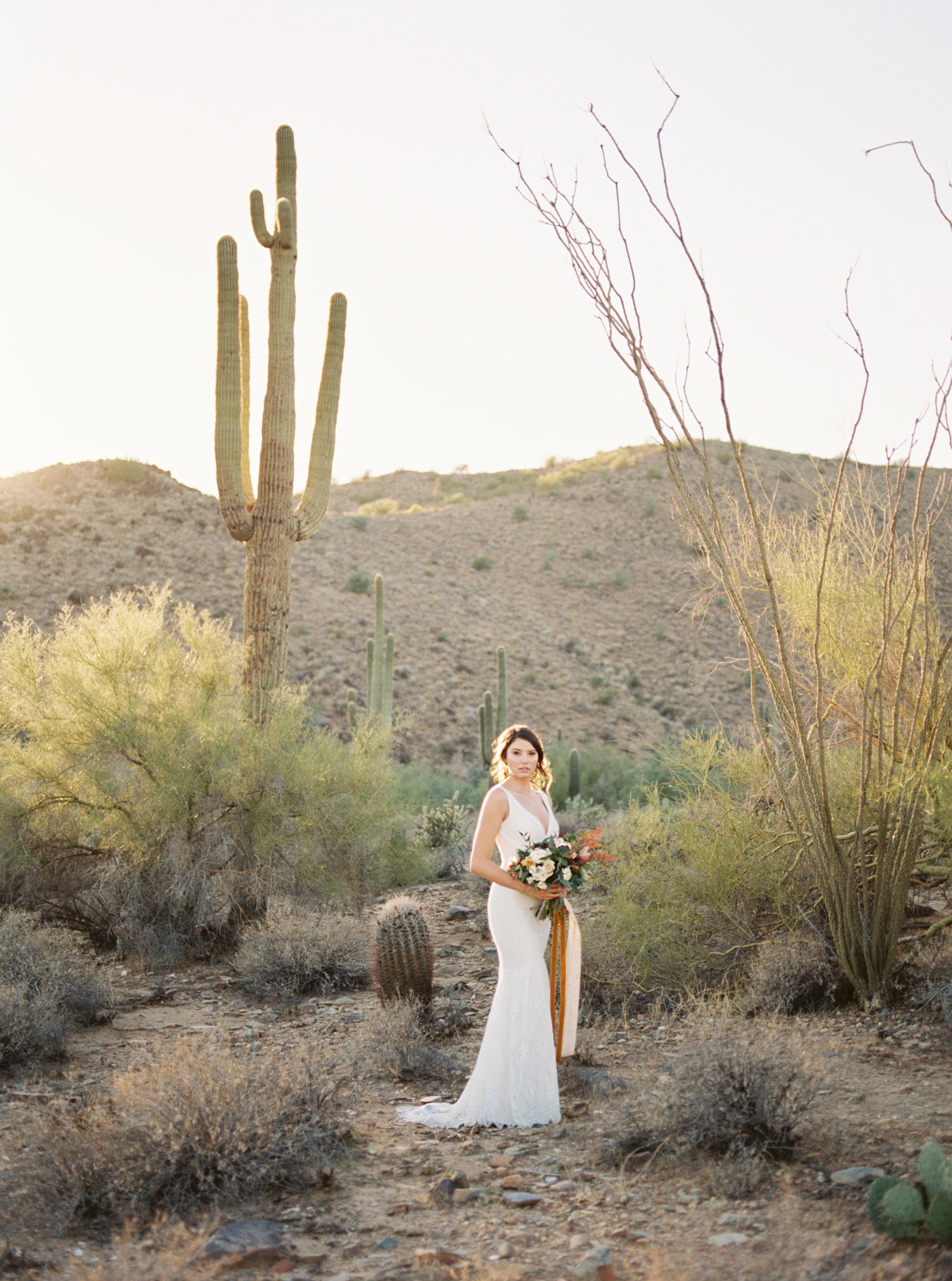 TaraBielecki_Arizona_Editorial22.jpg