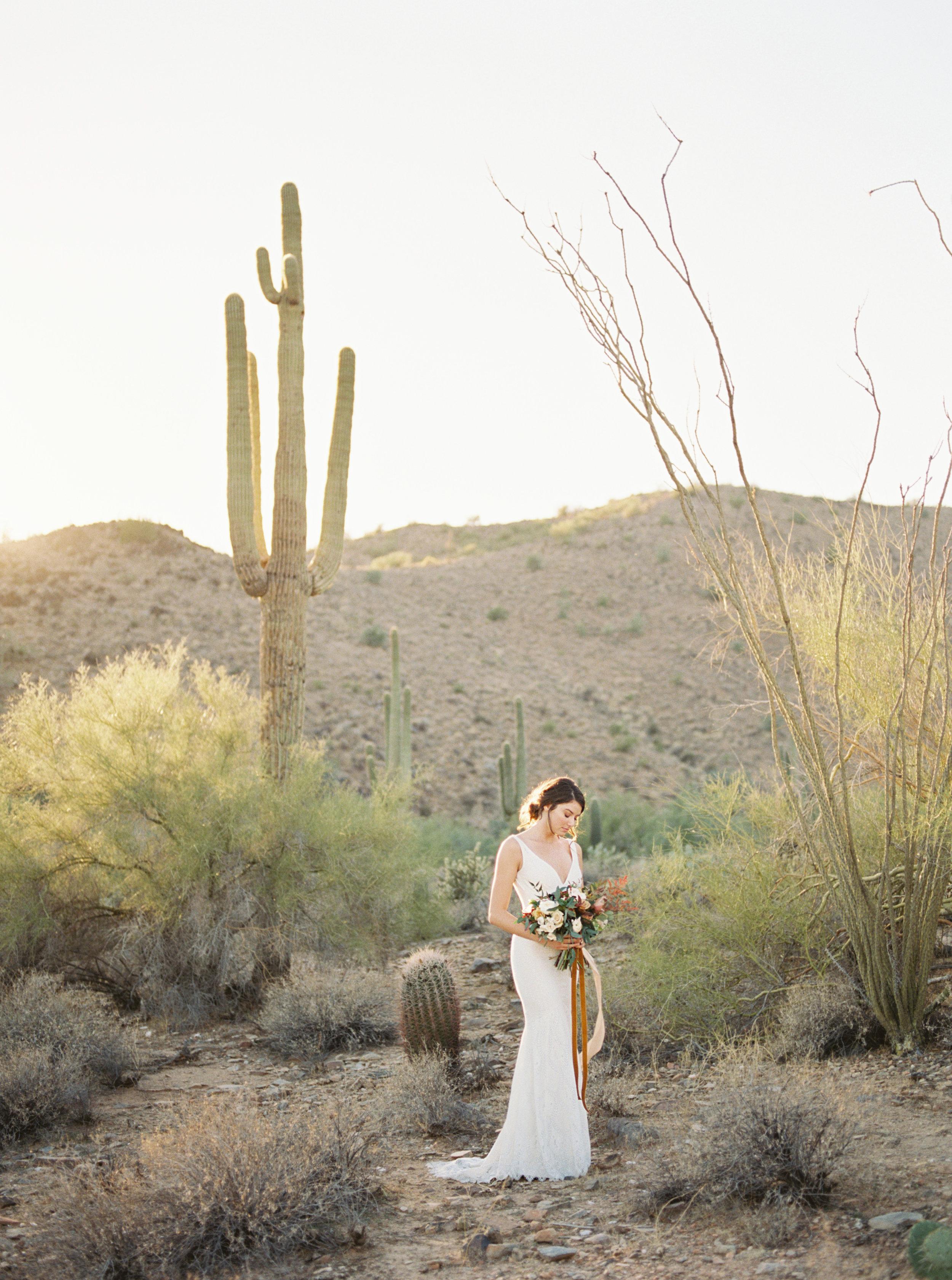 TaraBielecki_Arizona_Editorial25.jpg