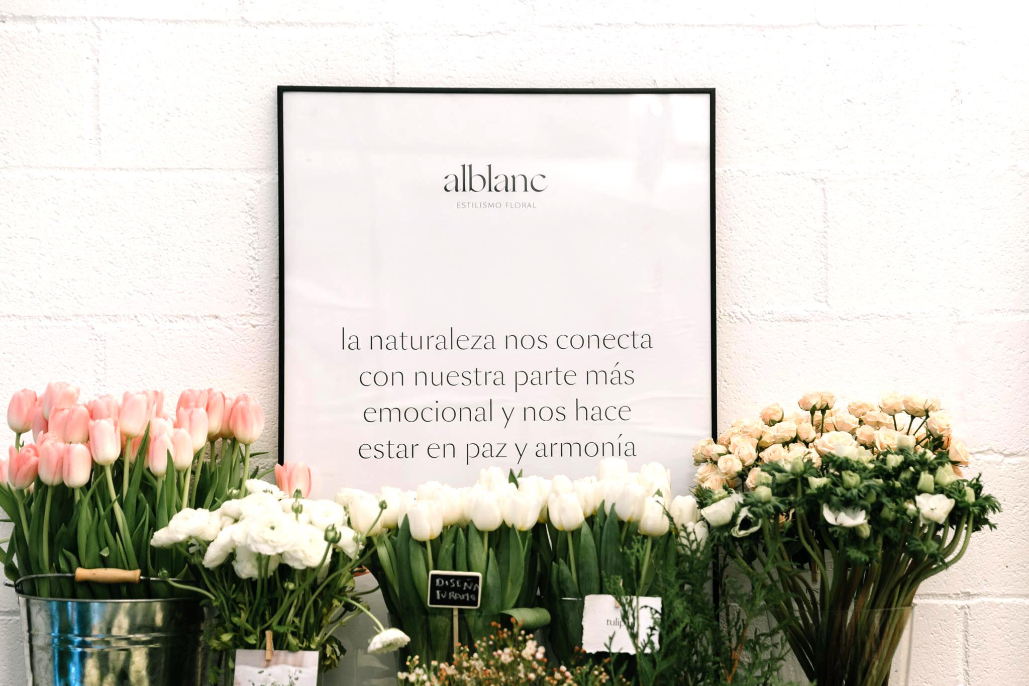 20161217-alblanc-singulares-006-copy.jpg