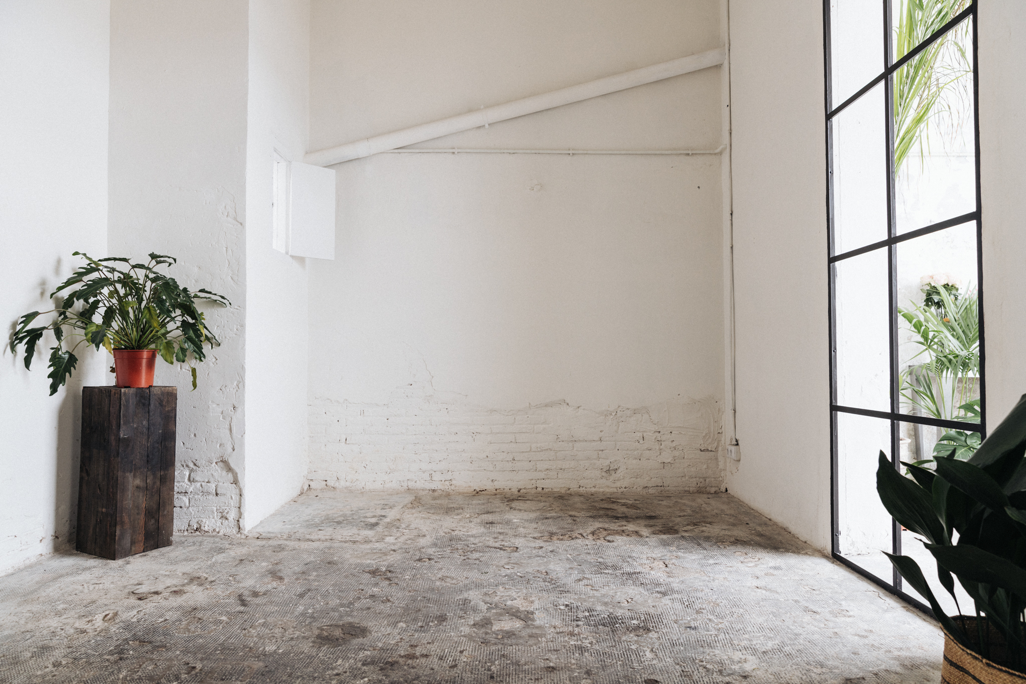 alquiler espacio plantas barcelona 2.jpg