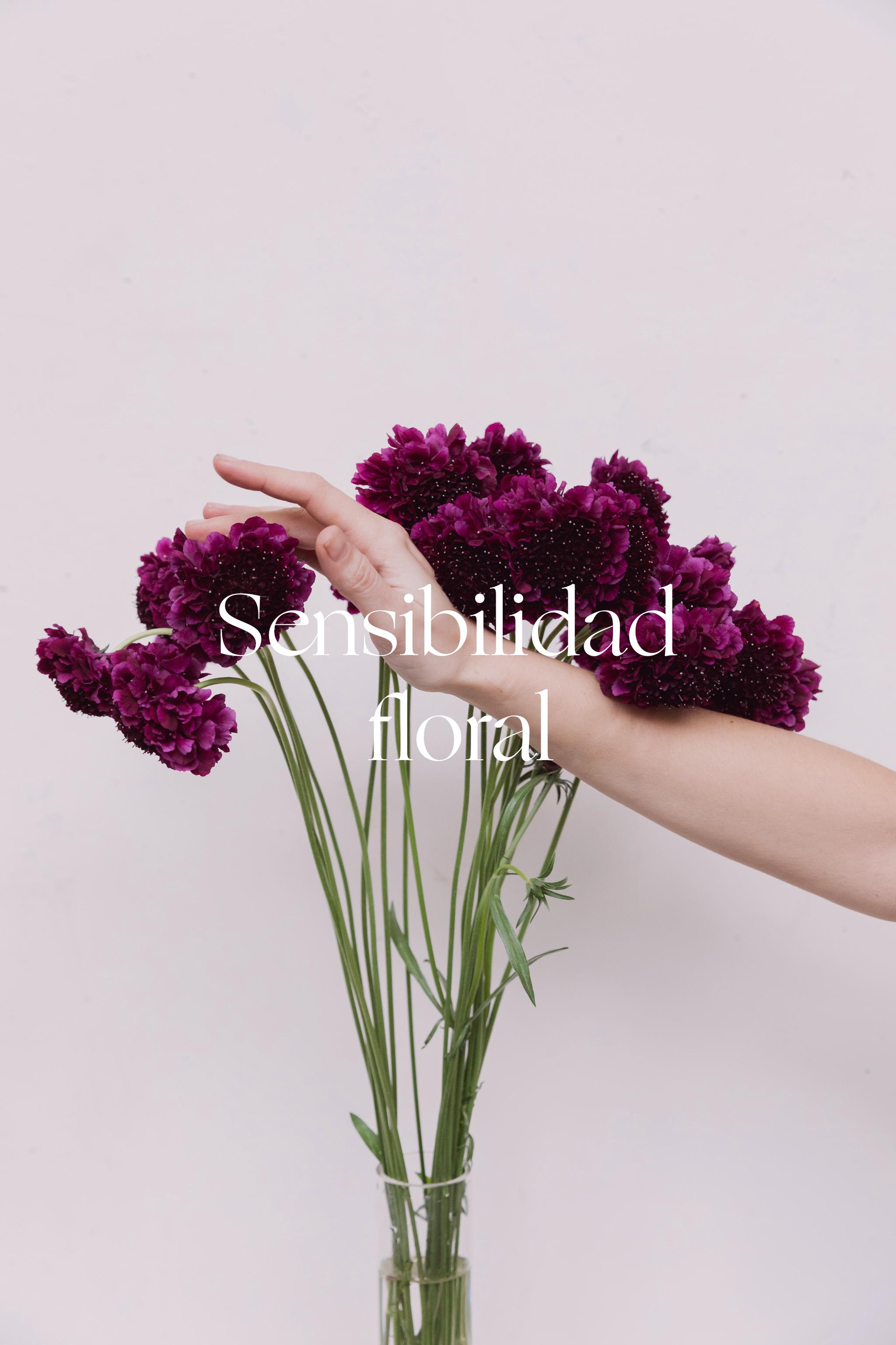alblanc sensibilidad floral.png