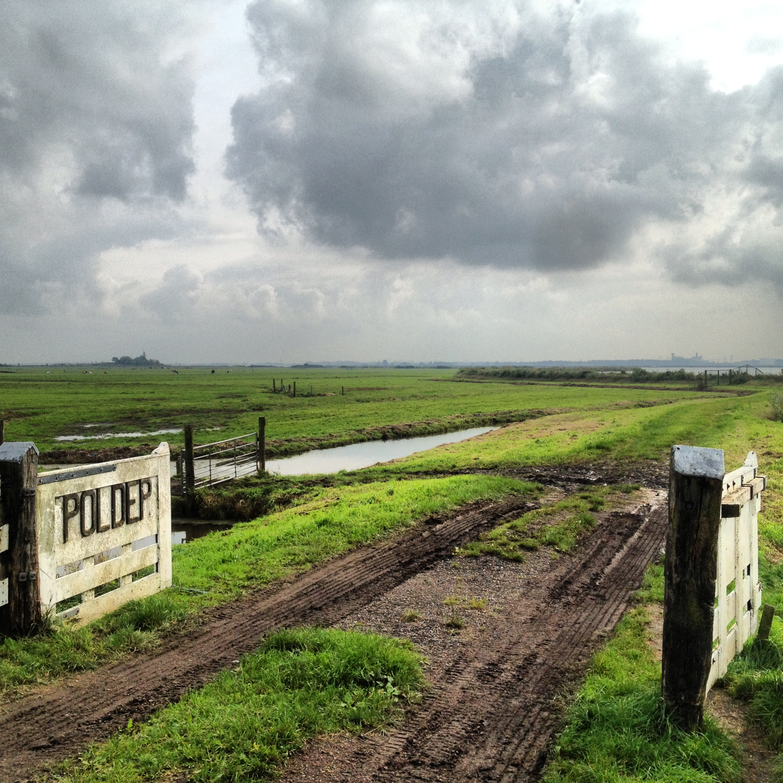 The polders of Amsterdam-Noord: photo by Arlen Stawasz