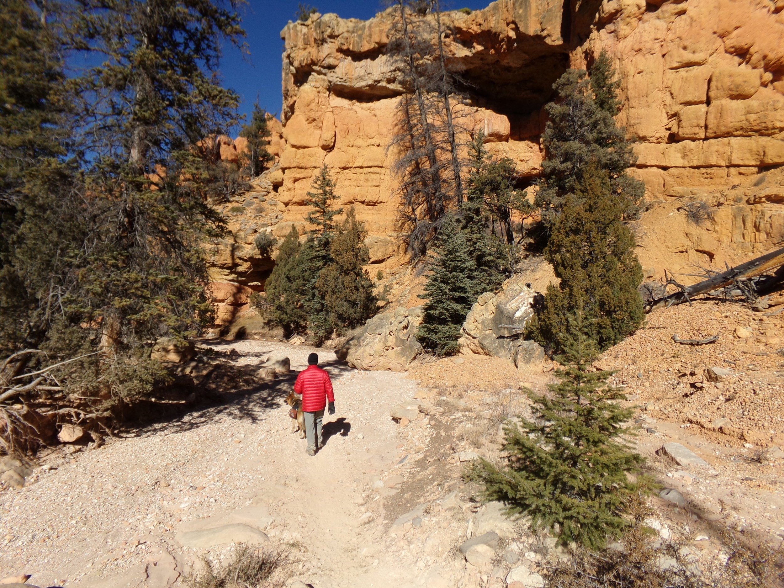 Losee Canyon Trail - a nice, easy walk through beautiful canyon country.