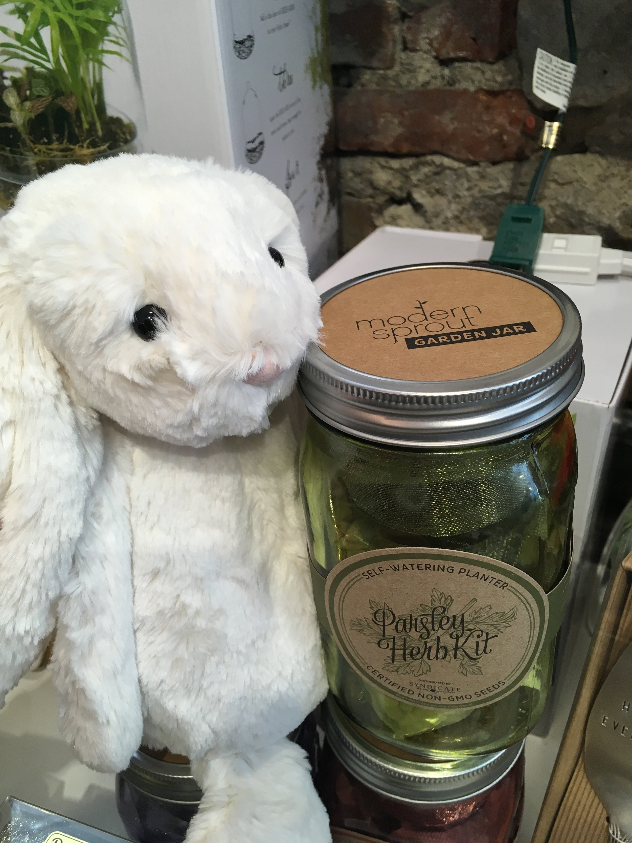 Something for everyone - Bunnies for the little ones and grow kits for Mom!