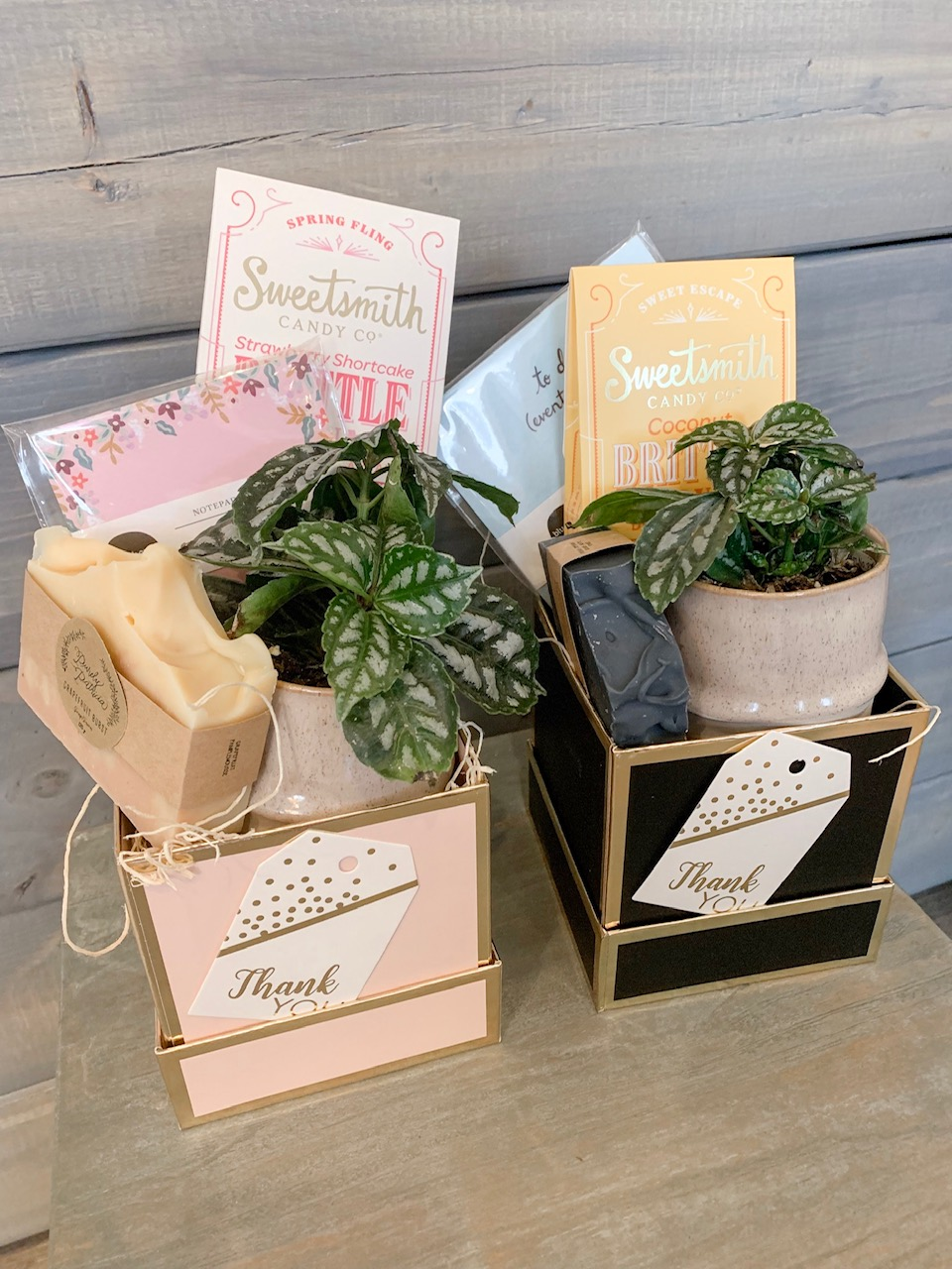 Gift Bundles - $39 each. Includes a plant, locally made soap, a note pad, brittle.