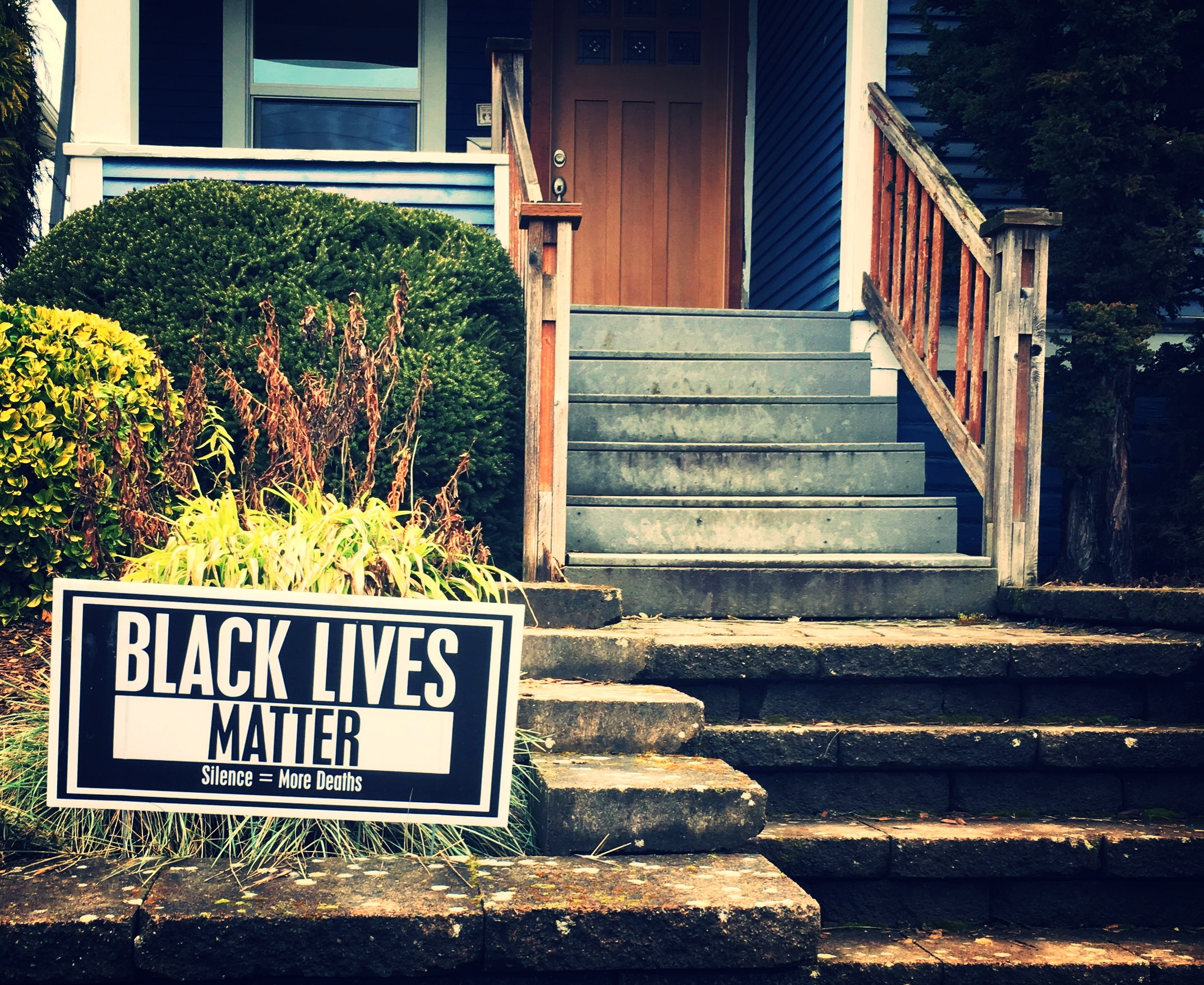 """Black Lives Matter""  ""Silence = More Deaths""  #blacklivesmatter"