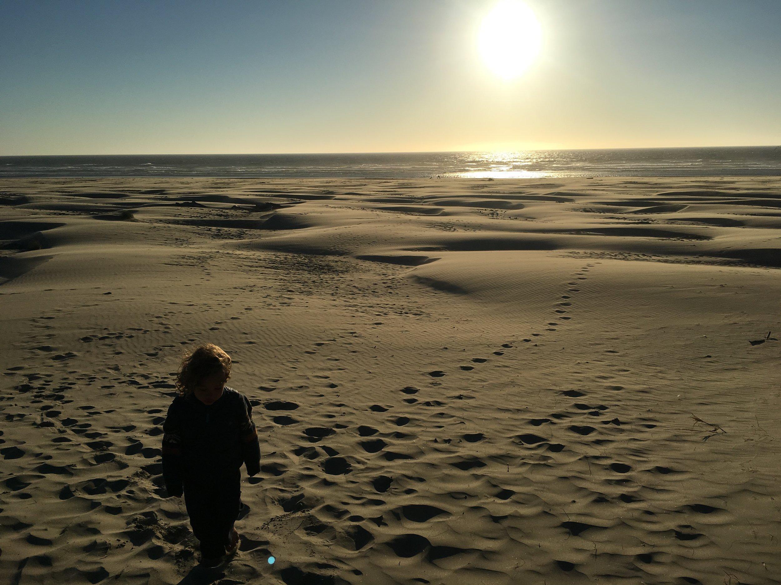 Zeke's footsteps on the beach.JPG