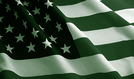 20081215-green-us-flag.jpg