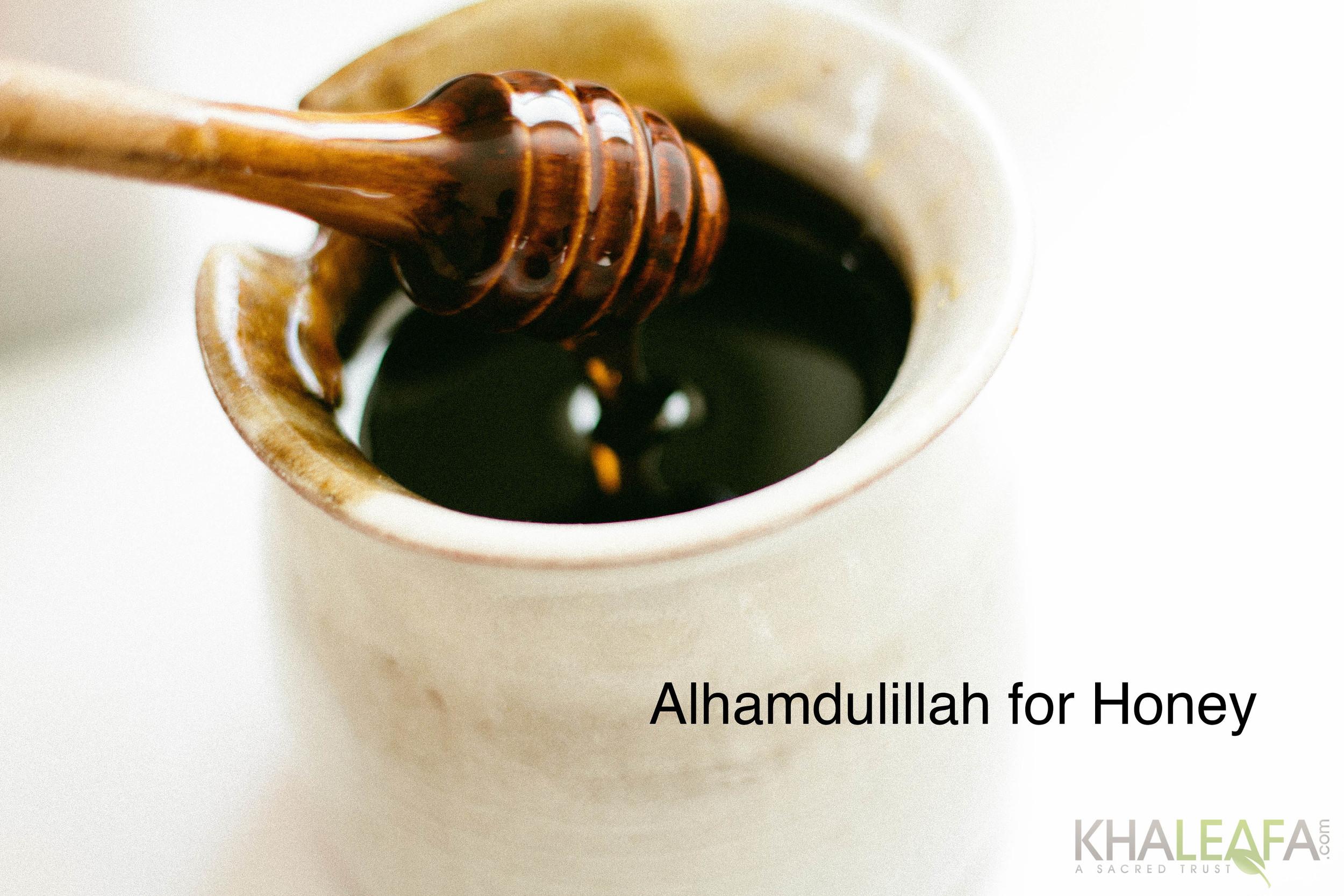 Honey33.jpg