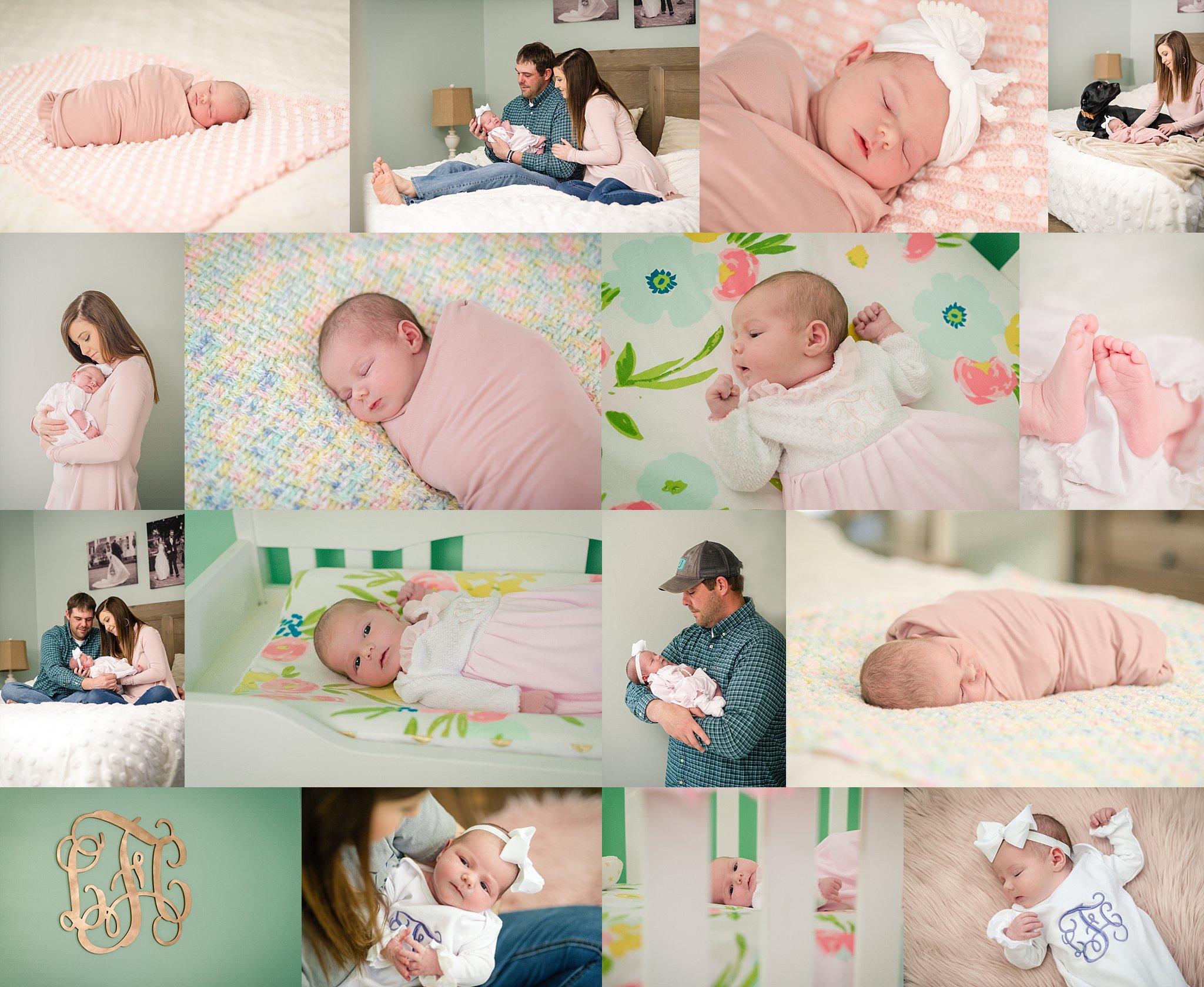 Liza Newborn Photographer