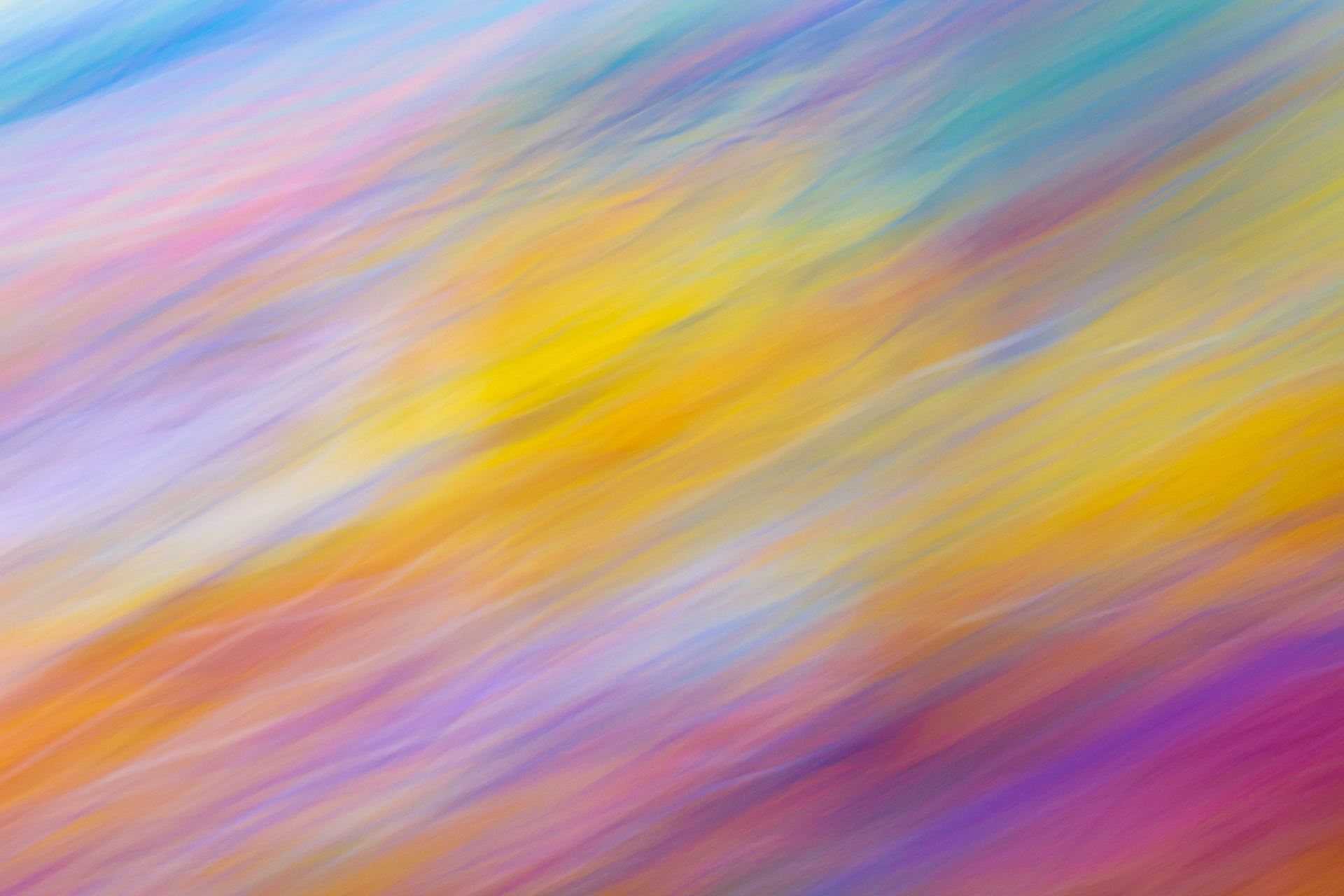 Color_Abstract-014.jpg