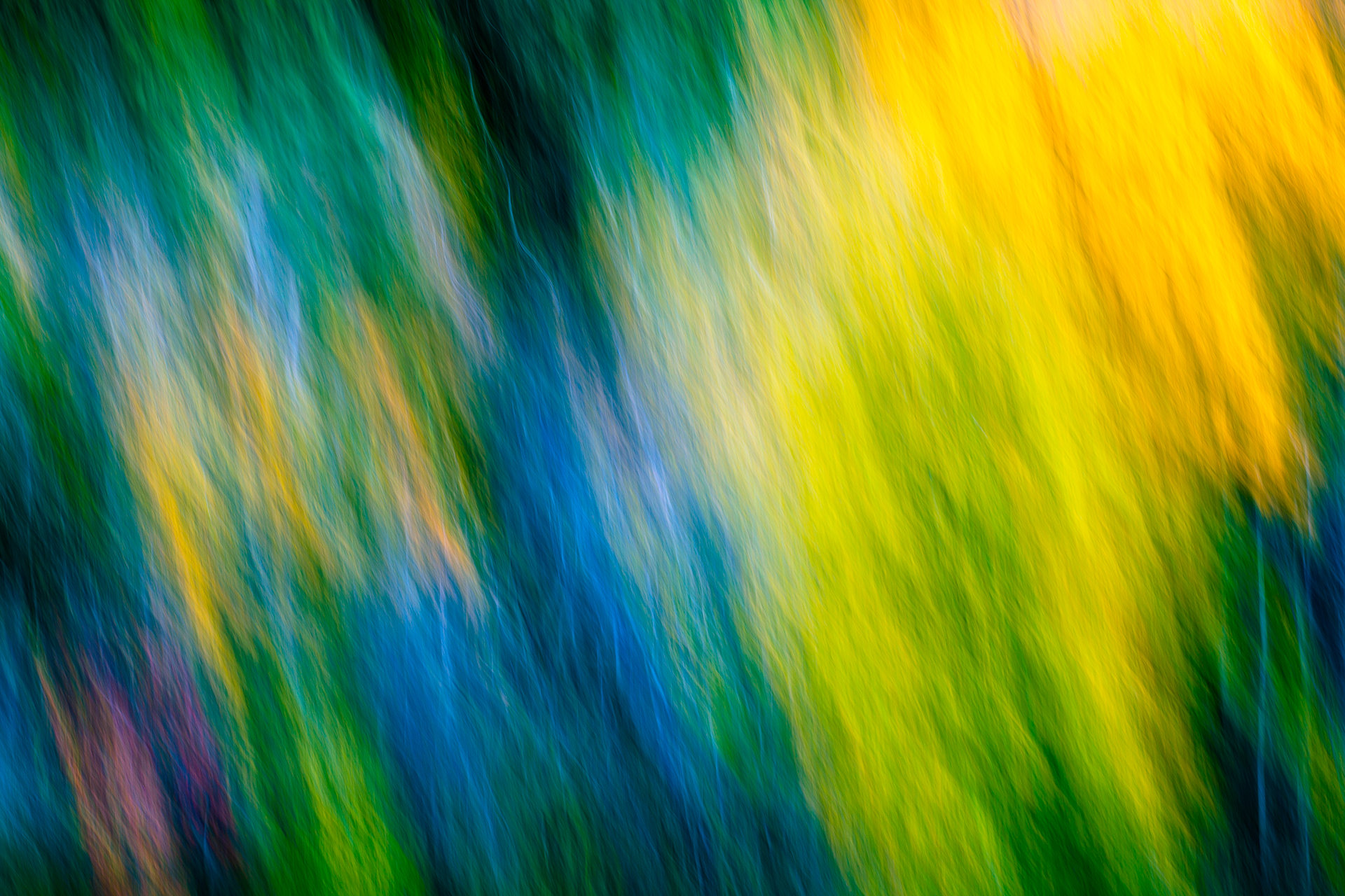 Color_Abstract-016.jpg