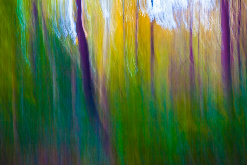 Color_Abstract-001.jpg