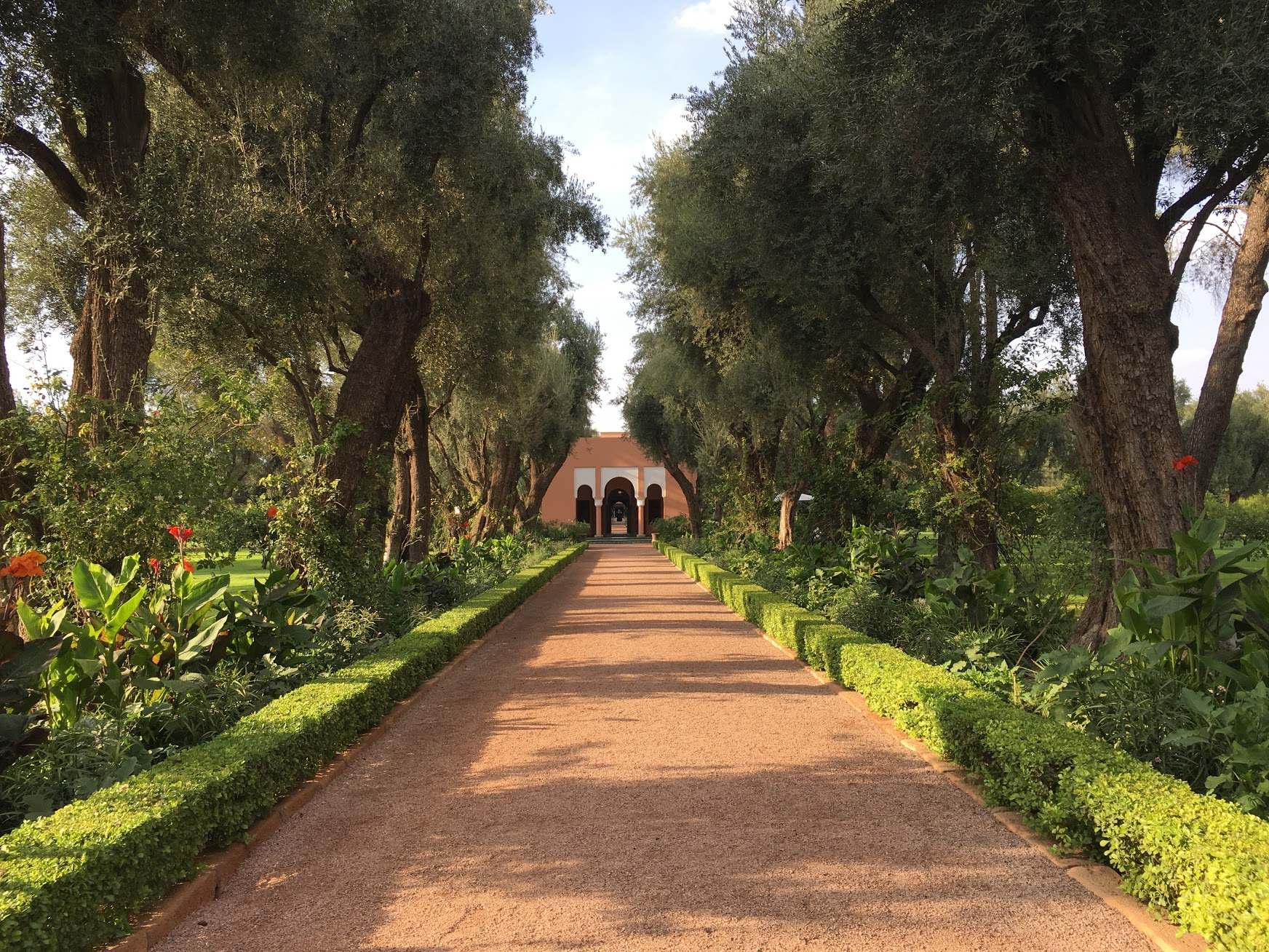 The beautiful gardens of La Mamounia