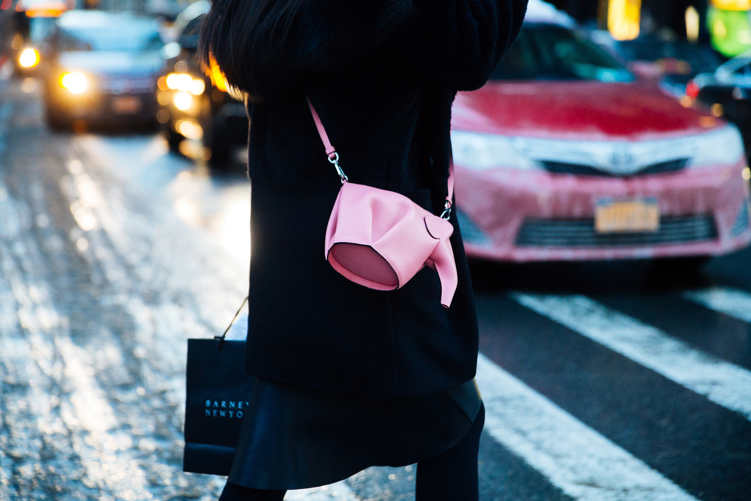 Ph: LOEWE Elephant Crossbody  Shot by Melodie Jeng